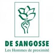 logo DE SANGOSSE